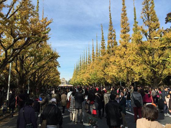 20151129-jingugaien-s.jpg