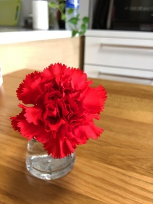 first-flower.jpg