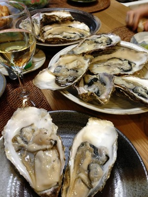 oyster0517.jpg