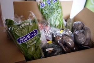 s-farm120127.JPG