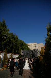 wedding_s.JPG